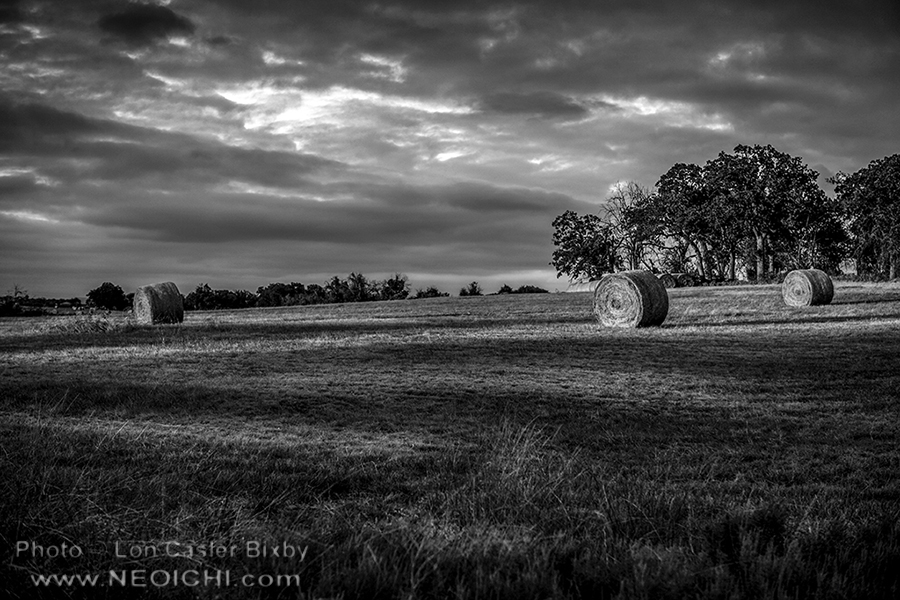 Round Bales - Series - Texas, 2014 - 0386 - Photography by Lon Casler Bixby - Copyright - All Rights Reserved - www.neoichi.com