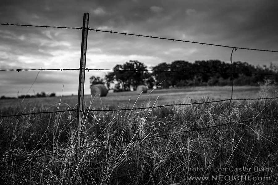 Round Bales - Series - Texas, 2014 - 0401 - Photography by Lon Casler Bixby - Copyright - All Rights Reserved - www.neoichi.com